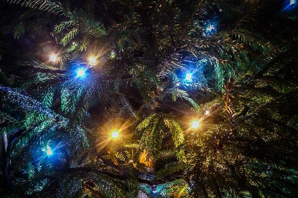 kerst-5-kerstboom