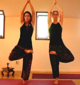 yoga balans boom houding - mediteren midden in de drukte