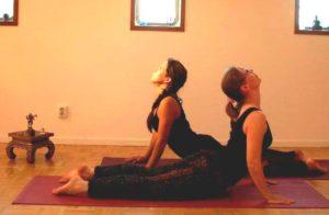 yoga weerstand - cobra houding