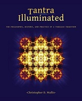 boek tantra illuminated - Wallis