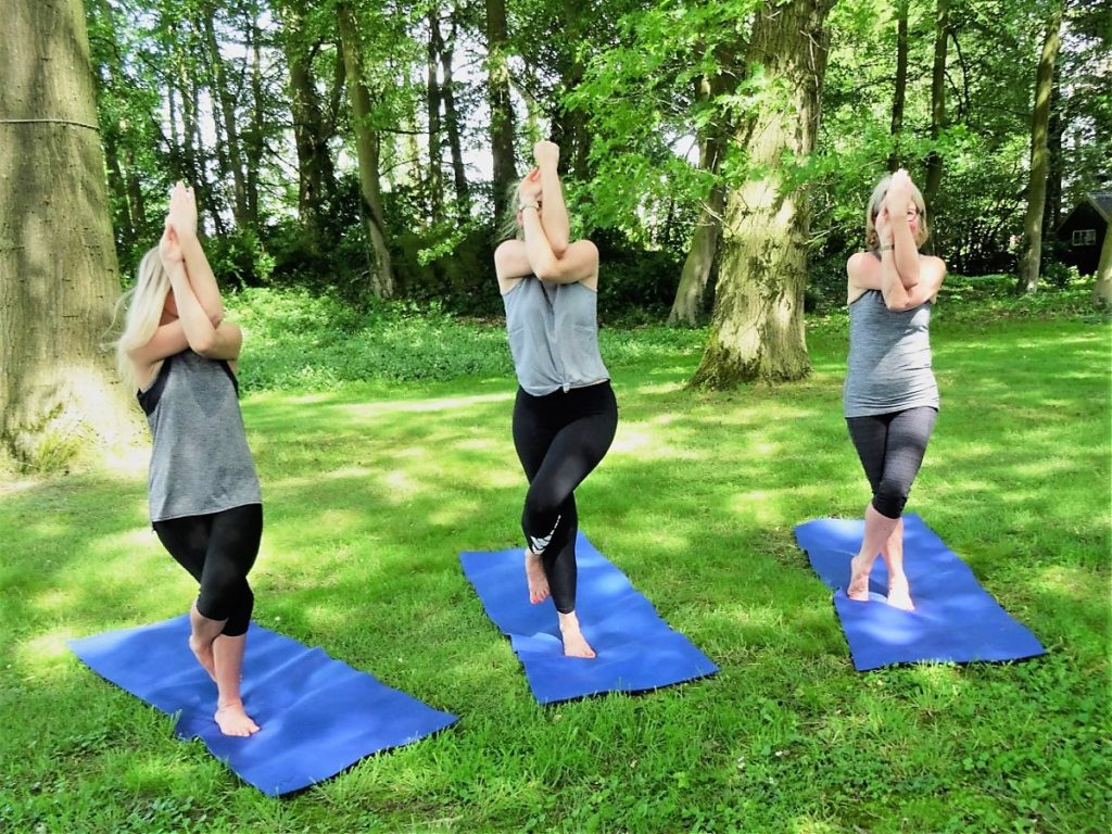 Hatha Yoga Teacher Training the Netherlands